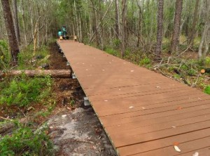 Okefenokee+Boardwalk+1